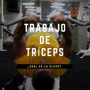 trabajo tríceps portada