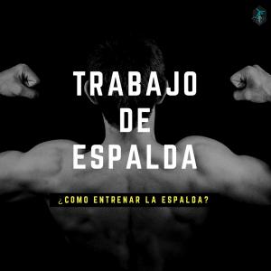 ESPALDA_TRABAJO_PORTADA